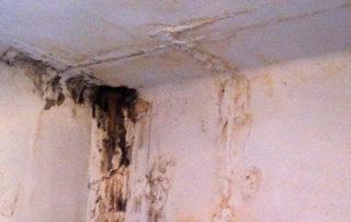 Humidité dans un logement indigne