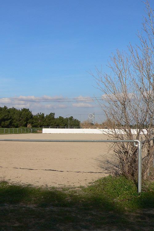 Terrain de horse ball