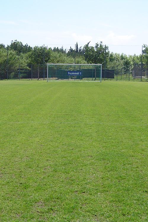 Stade Petite Crau