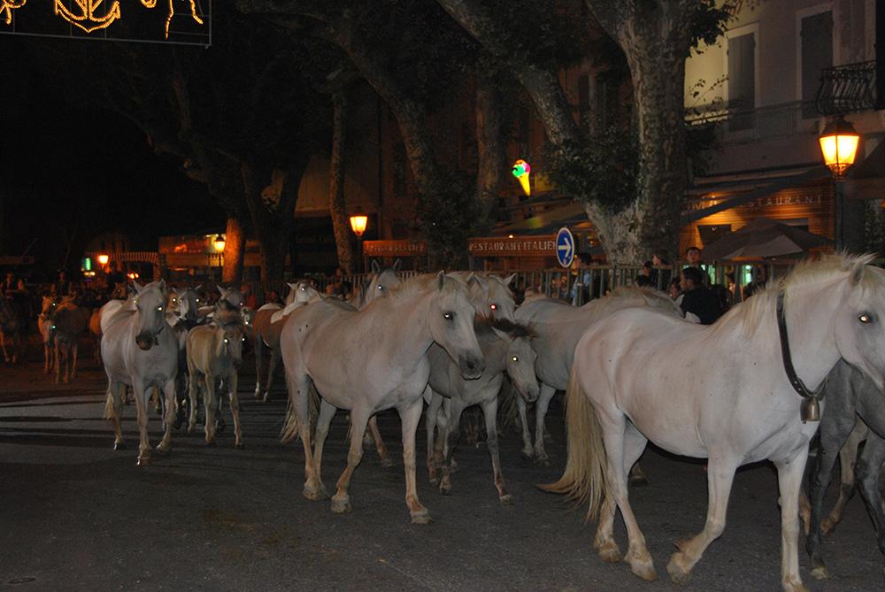 feria - 100 chevaux
