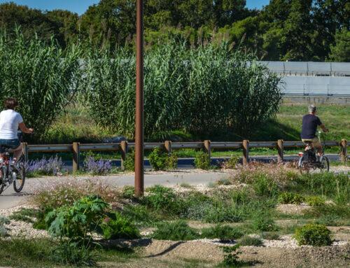 Les mobilités douces, une des priorités de la municipalité