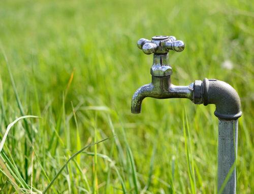 Les réserves d'eau potable menacées par l'arrosage nocturne des jardins